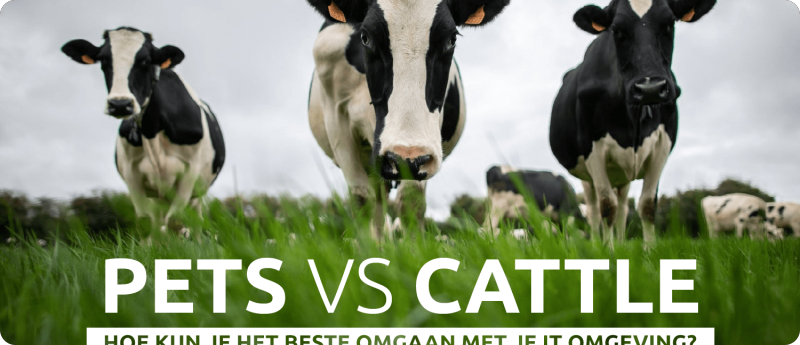 pets-cattle-blog